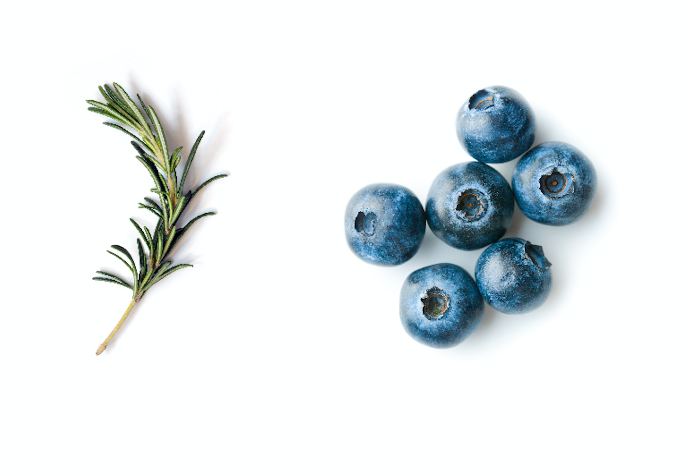 Rosemary Blueberry